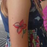 tatuje